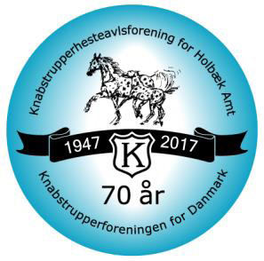 KNN 70th anniversary - 2017 conference